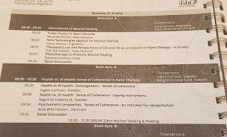 Programa Congreso Mundial IFSHT